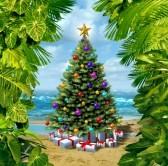 24000216-arbre-de-no-l-c-l-bration-plage-sur-une-le-tropicale-avec-des-cadeaux-et-des-cadeaux-avec-encadr-es-